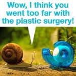 Snail joke.jpg