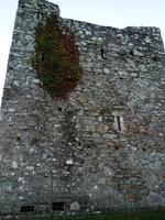 audleys castle c.jpg