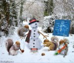 Squirrels-Making-a-Snowman--102678.jpg